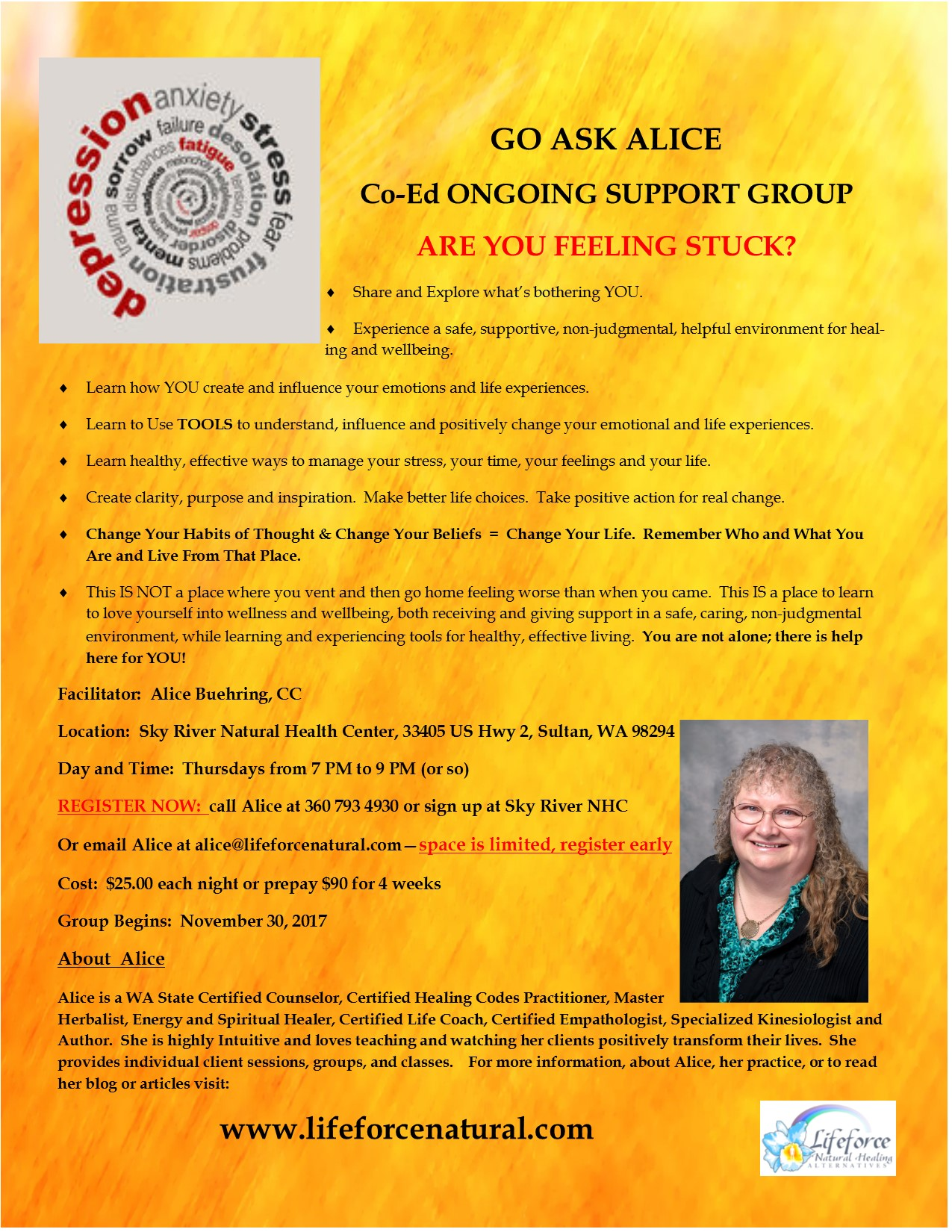 6 alice support group oct 2017Publication1